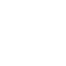 Silver Support Award